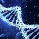 """El investigador Manel Esteller y su libro 'No soy mi ADN' – """"La herencia genética no es tan importante como parece. En el caso de las enfermedades, sólo determina un 10% de los casos"""""""