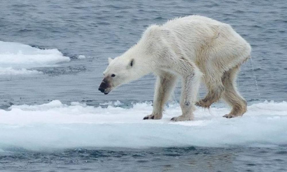 El calentamiento global y los fenómenos extremos en aumento